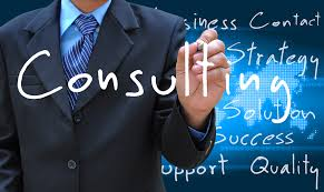 38-Small Business Consulting Services - Helping in the Augmentation of a Business